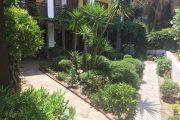 Ammon Garden